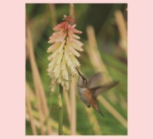 Rufous Hummingbird Kids Clothes
