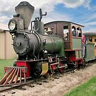 Narrow Gauge Train by ECH52
