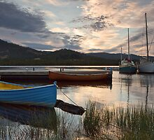 Morning on the Huon River at Franklin by Chris Cobern