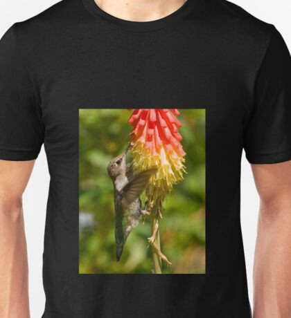 Rufous Hummingbird on Red Hot Poker T-Shirt Unisex T-Shirt
