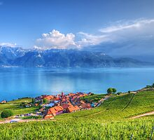 Terraced Vineyards of Lavaux UNESCO by Susan Dost