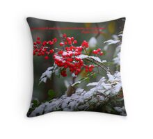 Holly Berries covered in snow.  Throw Pillow