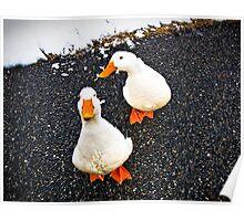 Renegade Ducks Poster