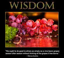 Wisdom by Trudy Wilkerson