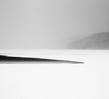 Reservoir I by Mary Ann Reilly