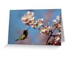 Glittery Green Dart Probes a Plume of Blooms Greeting Card