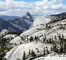 Half Dome in Yosemite National Park from Olmsted Point by Martin Lawrence