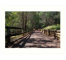 Path to Endeavour Park Tamworth NSW Art Print