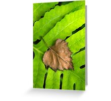 Old and New Leaf Abstract Art Greeting Card