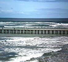 Southern Ocean meets Port Phillip Bay, Queenscliff,  Vic. by EdsMum
