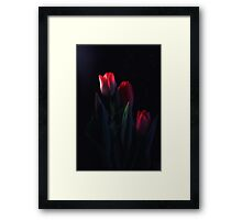Tulips for My Tulip Framed Print