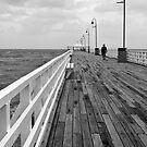 Walking alone by Liza Yorkston