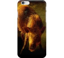 Piggy in his den iPhone Case/Skin