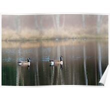 Late Afternoon at the pond Poster