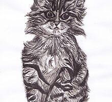 Grey tabby kitty by Melanie Jess