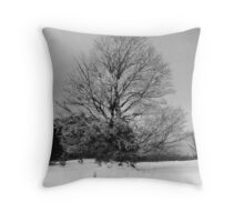 Winter Morning, Northern Michigan Throw Pillow