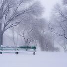 Winter II by jojocraig