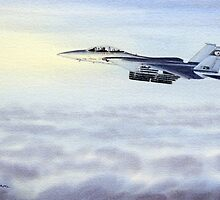 F-15 Eagle Aircraft by bill holkham
