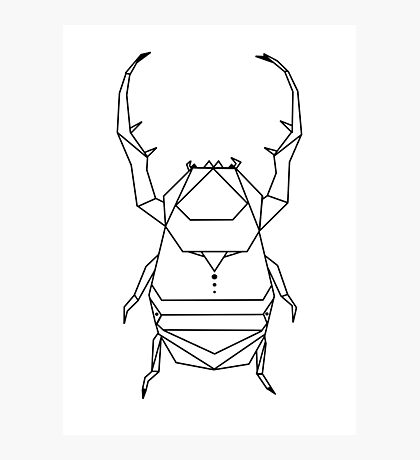 Scarab Photographic Print