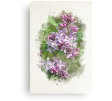 Lilac Watercolor Art Canvas Print