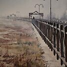 North Esk Mist, Launceston by Pauline Winwood