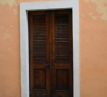 Doors and Windows of Old San Juanl by sullivan59