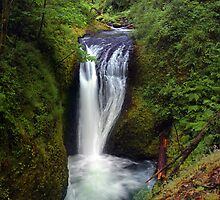 Middle Oneonta Falls by USGolfers