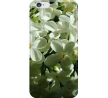 Lilac time iPhone Case/Skin