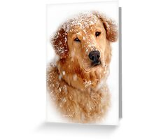 Frosty Mug Greeting Card