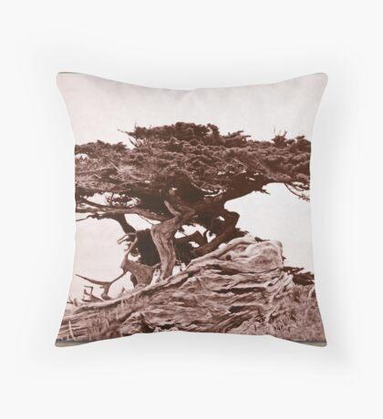Sepia Cypress Throw Pillow