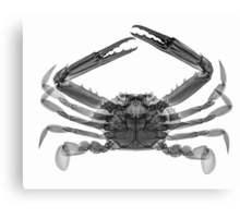 CRAB Canvas Print