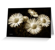 Monochrome Flowers Greeting Card