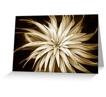 Abstract Spiral Monochrome Plant Greeting Card