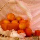 Brighty oranges and lemons... Free State, South Africa by Qnita