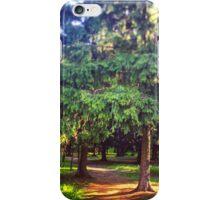 Morning walk iPhone Case/Skin