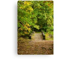 Fall Bridge Landscape Canvas Print