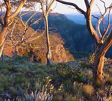Morning over Bryce's Gorge - Australian Alps by Rick Box