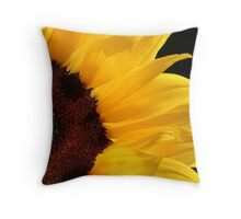 Light in our Darkest Moments... Throw Pillow