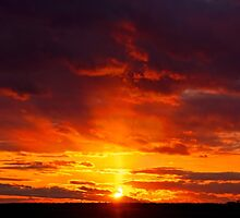 Sailor's Delight by JoeGeraci