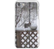 frozen dinner iPhone Case/Skin