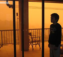 Dust Storm 2 by Cheryl Parkes