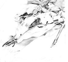Leaf Litter by MissJones