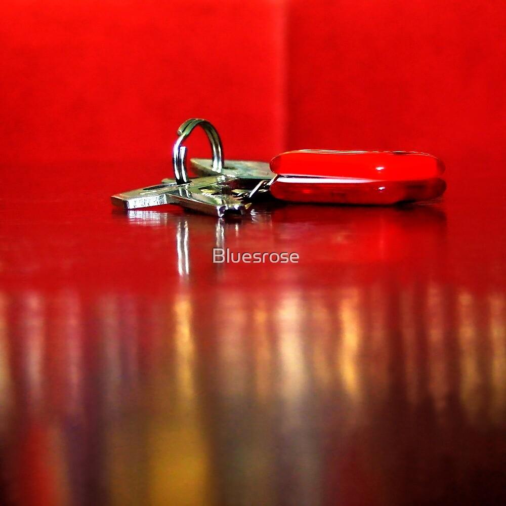 Keys by Bluesrose