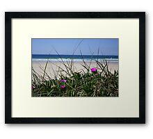 Delicate Dune Framed Print