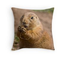Oh Crumbs! Throw Pillow