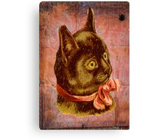 Victorian Vintage Coral Bow Brown Cat Canvas Print