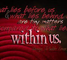 What Lies Within Us © Vicki Ferrari Photography by Vicki Ferrari