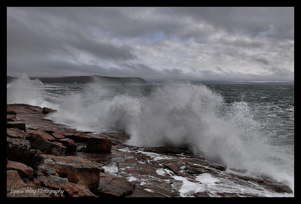Breaking Storm by Lyana Lynn