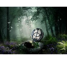 Chalice Well Photographic Print