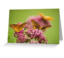 Social Butterflies Greeting Card